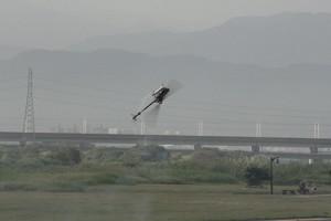 gaui day 2012_50