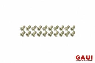 十字皿頭螺絲包-銀色(M2x4)x20